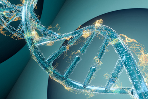 """从1%起步,中国基因测序研究跻身世界前列 """"生命天书""""破译20年"""